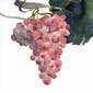 NapKing Bellavia Ricami Table Linens Italy